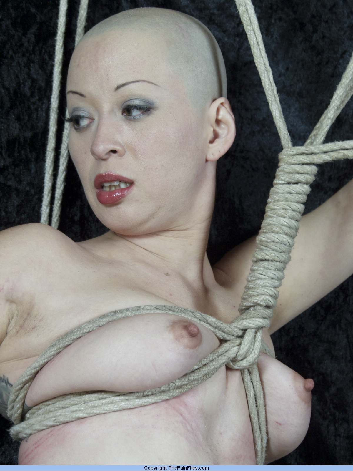 adult-bdsm-fetishe-models-wanted